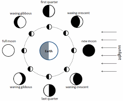 Lunar Hair Chart For 2018 Lajoshrich Com