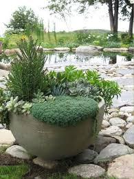 Best 25 Dish Garden Ideas On Pinterest  Succulent Pots Indoor Succulent Container Garden Plans