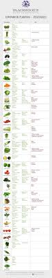 Vegetable Companion Planting Charts Blackwoods Co Za Companion Planting Vegetables Blackwoods