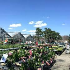 garden centers in ma. Wonderful Garden Mahoneys Garden Center Winchester Photo Of Centers Ma United States  For Garden Centers In Ma U