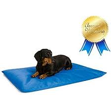 Amazoncom KH Pet Products Cool Bed III Cooling Dog Bed Large