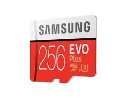 <b>Карта памяти</b> MicroSDxc Samsung EVO Plus <b>256Gb</b> - купить ...