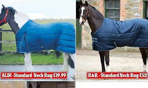 aldi runs poshest ever advert for horse clothing daily mail