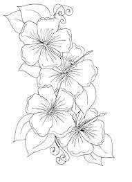 Hibiscus Flower Coloring Page Ecancerargentinaorg