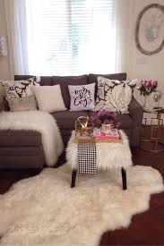 Girly Living Room Ideas For Apartments
