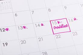 Ovulation Chart Pregnancy Signs Ovulation Calculator Fast And Free Fertility Tracker