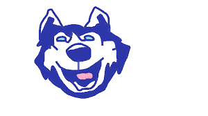 uconn husky ms paint logo x post from r collegebasketball