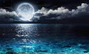 Moonlight Wallpaper HDWPlan [1493x900 ...