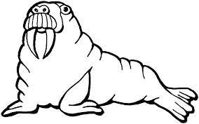 Small Picture Free Walrus Coloring Pages