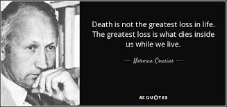 Loss Of Life Quotes Cool Norman Cousins Quote Death Is Not The Greatest Loss In Life The