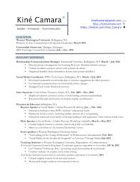 Resume Professional Profile Simple Examples Of Resume Profile