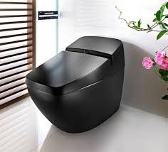 black modern bathroom toilet with inspiration picture