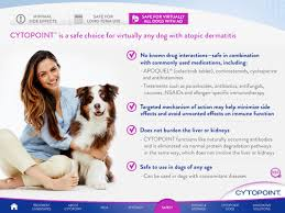 Allergy Relief For Dogs! | Smith Veterinary Hospital Thornhill, Ontario