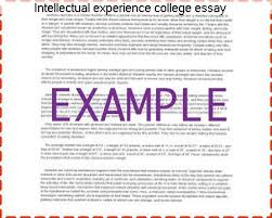 intellectual experience college essay college paper academic service intellectual experience college essay we hope these essays inspire you as you write your own