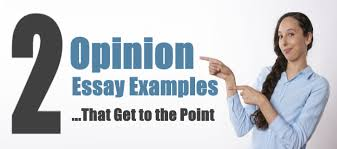 opinion essay examples that get to the point essay writing