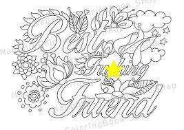Small Picture Best Fcking Friend Best Friend Gift Best Friend Birthday