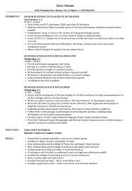 Business Intelligence Sample Resume Business Intelligence Developer Resume Samples Velvet Jobs 23
