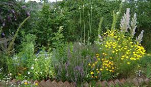 Small Picture Herb Garden Ideas Uk To
