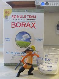 borax for ant control. Unique For Step 2 U2013 Measure Borax Borax Ant Killer  With For Control