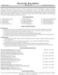 functional executive resume resume samples types of resume formats examples templates