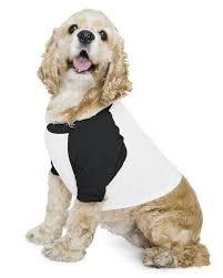 American Apparel Bb953w Poly Cotton Raglan Dog T Shirt