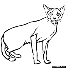 Here are free coloring pages with lampo, milady, pilou, and polpetta that you can download and print. Cats Online Coloring Pages