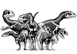 Disegno Da Colorare Gruppo Di Dinosauri Scheletri Cat 8297 Images