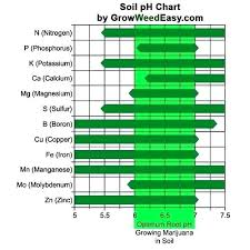 Ph Level Chart For Urine How Can I Test My Ph Level Digidownloads Co