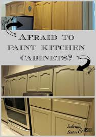 diy paint kitchen cabinetsAfraid to Paint Kitchen Cabinets  Salvage Sister and Mister