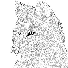 Amazing Adult Wolf Coloring Pages Grey Page Free Printable Mandala