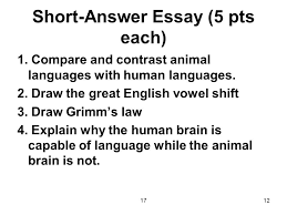 human brain essay functions of the parts of the human brain psychology essay antwl college application essay format example