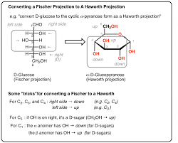 The body breaks down or converts most carbohydrates into the sugar glucose. Converting A Fischer Projection To A Haworth And Vice Versa