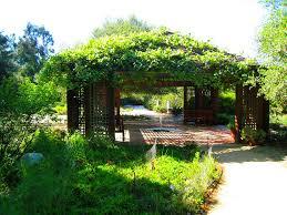 rancho santa ana botanical gardens by zideaz
