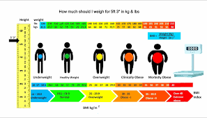 How Much Should I Weigh For My Height Age Bmi Calculator