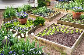 images of raised garden beds raised vegetable garden beds style images of raised vegetable garden beds