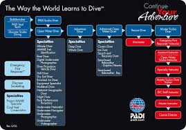 Dive Training Bahia Divers