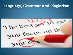 how to write error assignment language grammar and plagiarism