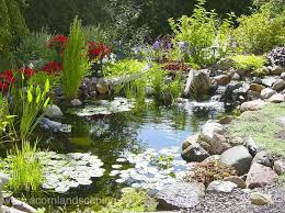 Small Picture 102 best Ponds Water Gardens images on Pinterest Garden ideas
