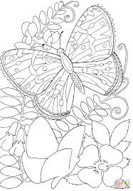 Printable Coloring Pages For Kids Butterfly Among Flowers Coloring