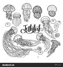 Small Picture Jellyfish Drawn In Line Art Style Vector Ocean Animals In Black