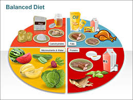 Balanced Diet Chart Ppt Free Balanced Diet Chart Download Free Clip Art Free Clip