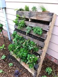 vertical gardening with pallets recycled pallet vertical garden vertical herb garden diy pallet