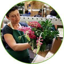 Bei gärtner pötschke können sie sich pflanzen, blumen und das hochwertige gartenzubehör bequem nach hause bestellen. Uber Gartner Potschke Gartner Potschke
