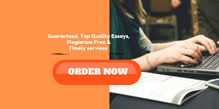 custom essay online lancer writing center order high quality essays from our online essay writers