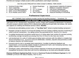 Product Manager Resume Samples Delectable Test Manager Resume Kenicandlecomfortzone