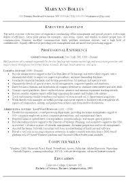 Professional Summary Resume Sample Skills Summary Resume Examples
