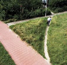 Desire Paths and Helicopter Dog Walking. Where is the User Centred ...