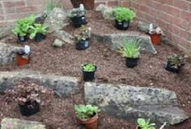Rock Garden Design Ideas Best Create An Alpine Rockery Amateur Gardening