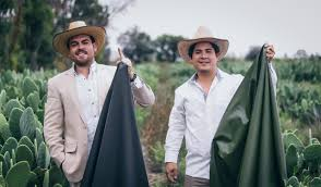Two Friends From Mexico Developed A <b>Synthetic Leather</b> Made ...