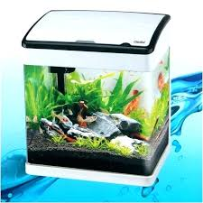 Fishtank furniture Home Aquarium Office Desk Fish Tank Best Desktop Aquariums For The Design Decorating Furniture Sales Nj Catfigurines Office Desk Fish Tank Best Desktop Aquariums For The Design